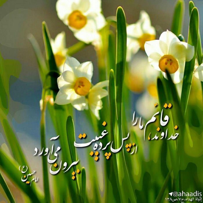 امام حسین (ع):خداوند قائم ما را از پس پرده غیبت بیرون می آورد اثباه الهداه، ج7،ص138