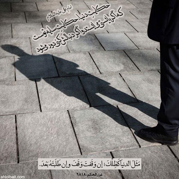 امام علی  علیه السلام :حکایتِ دنیا، حکایتِ سایه توست  ؛ که اگر بایستى مى ایستد و اگر دنبالش کنى دور مى شود .