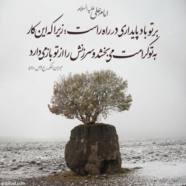 امام  علی علیه السلام  :بر تو باد پایدارى در راه راست؛ زیرا که این کار، به تو کرامت مى بخشد