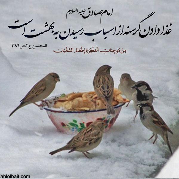 امام صادق (علیه السلام): غذا دادن گرسنه از اسباب رسیدن به بهشت است