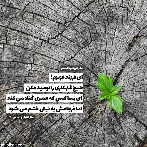 امام علی علیه السلام : ای فرزند عزیزم!  هیچ گنهکارى را نومید مکن؛ اى بسا کسى که عمرى گناه مى کند، اما فرجامش به نیکى ختم مى شود