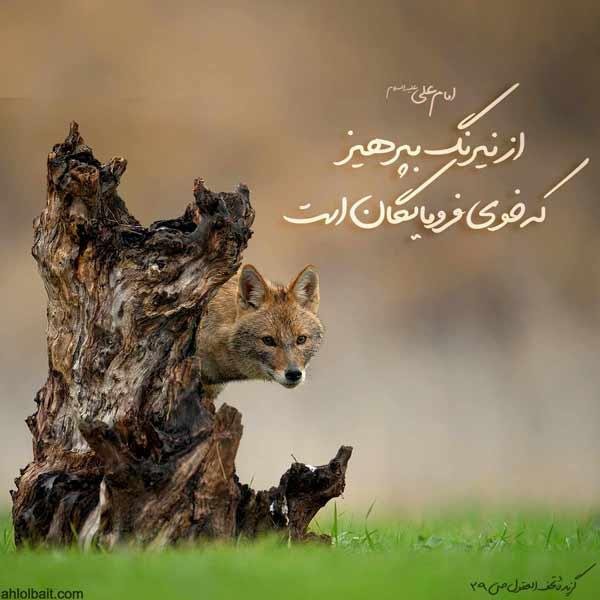 امام علی علیه السلام:از نيرنگ بپرهيز ، كه خوى فرومايگان است