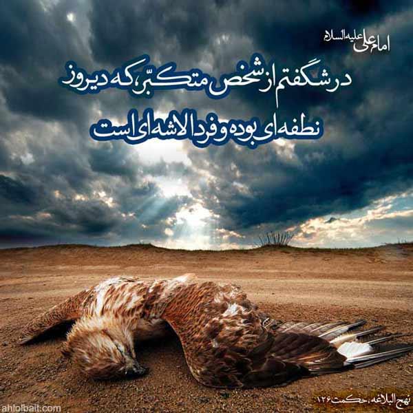 امام علی علیه السلام :در شگفتم از شخص متکبّر، که دیروز نطفه اى بوده و فردا لاشه اى است.