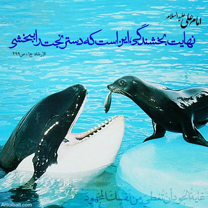 نهایت بخشندگى (عکس نوشته) - غایَةُ الجُودِ أنْ تُعْطیَ مِن نَفسِکَ المَجهودَ - نهایت بخشندگى ، این است که دسترنجت را ببخشى.