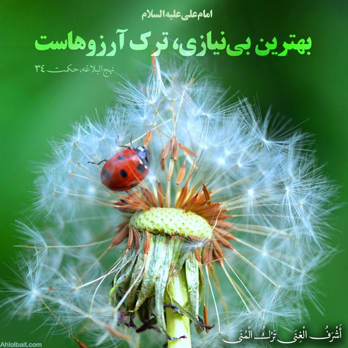 امام علی علیه السلام  أَشْرَفُ الْغِنَى تَرْکُ الْمُنَى بهترین  بى نیازى،  ترک آرزوهاست نهج البلاغه، حکمت 34