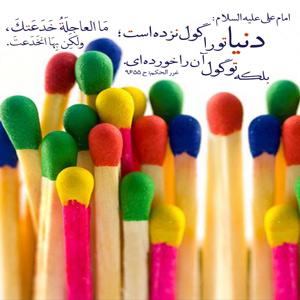 امام علی «علیه السلام»  دنیا تو را گول نزده بلکه تو فریب دنیا را خورده ایی غررالحکم،ح9655